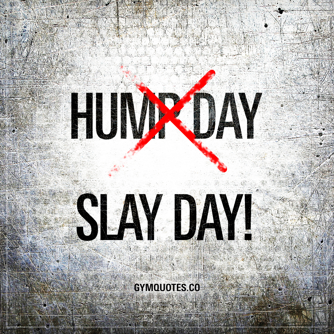 Quotes Of The Day Hump Day  Slay Day  Hump Day Quote About Slaying
