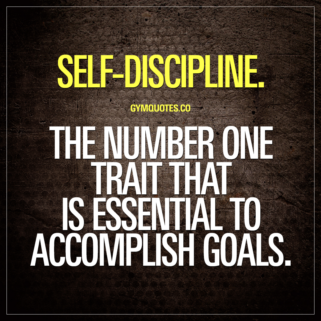 self discpline Self-discipline is key to the creation of a happy, healthy, productive work and personal life here are eight ways to help you build self-discipline.