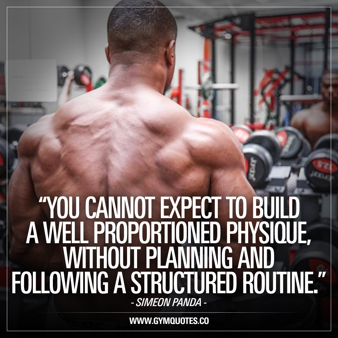 Panda Quotes Simeon Panda Quote You Cannot Expect To Build A Well Proportioned