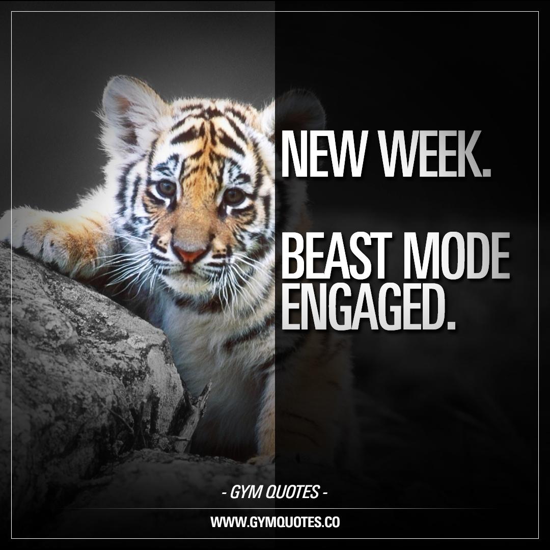 New week. Beast mode engaged.